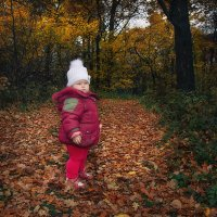 Прогулка в осеннем лесу :: Ирина Демидова