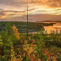 Золотая осень Карелии :: Елена Решетникова