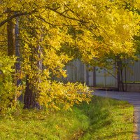 Осень на Парковой улице :: Виталий