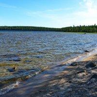 Озеро Поньгома :: Владимир Брагилевский
