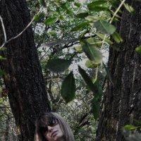 джунгли :: Роза Бара