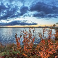 Осень в тундре :: Николай Андреев