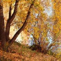 Осень шагает по берегам реки :: Екатерина Торганская