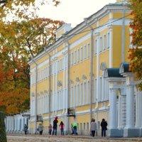Правленская ул. Просто улица ко входу в парк. :: Владимир Гилясев