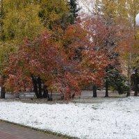 добавлен белый цвет... :: Alexandr Staroverov