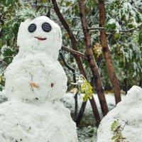 Полтора снеговика :: cfysx