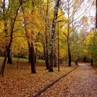 в парке :: Наталья Сазонова