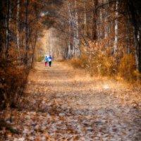 Осень для двоих :: Андрей Борисенко