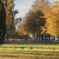 Осень в городе :: Ирина Приходько