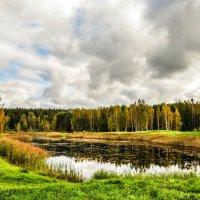 Осень :: Ирина Никифорова