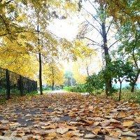 Autumn :: Василиса