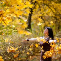 Падают, падают листья... :: Анна