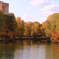 Октябрь в городе :: Татьяна Ломтева
