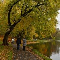 Осенняя прогулка :: Анастасия Смирнова