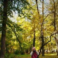 Осенний фотограф :) :: Александр Шамов