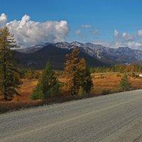 Дальняя дорога,неба синева... :: Александр Попов