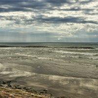 Пляж. :: ALLA Melnik