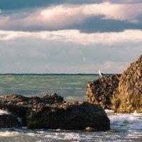 царский пляж :: Эдуард Тищенко