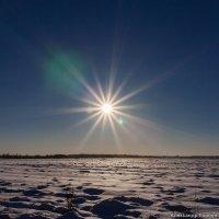 Белое солнце пустыни :: Александр Горбунов