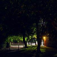 Ночь, улица, фонарь... :: Julia Demchenko