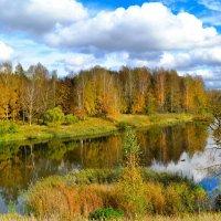 Осень Смоленщины (6) :: Милешкин Владимир Алексеевич