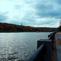 Осень ... :: Лариса Корженевская