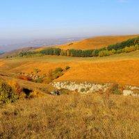 Золотая осень в окрестностях Кисловодска :: Vladimir 070549
