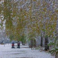 Первый снег---01 :: Владимир Холодный