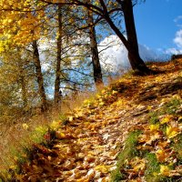Осенняя пора :: Валерий Толмачев