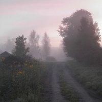 Туманный рассвет :: Павел