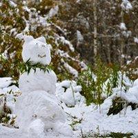 Гламурный снеговик :: cfysx
