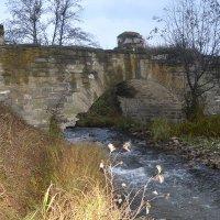 Старинный мост через реку... :: Дмитрий Петренко