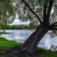 екатерининский парк :: михаил скоморохов