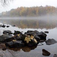 Октябрь :: Михаил Бибичков