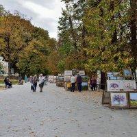 в осеннем парке :: Мария Климова