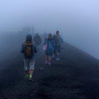Как ёжики в тумане.. :: Виктор Льготин