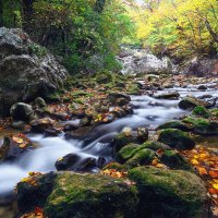 Осенний ручей. :: Mihail Mihaylov