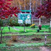 Работа в осеннем саду. :: Валерий Гудков