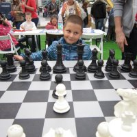 Играю чёрными :: Дмитрий Никитин