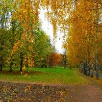 Осенью. :: Александр Атаулин