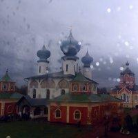 Дождь красоту не скроет.. :: Vladimir Semenchukov