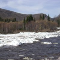 Река Ус. Весна :: Марина Домосилецкая