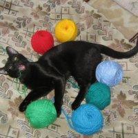Кошка и клубочки :: Татьяна