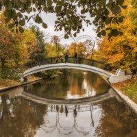 Нам буйство красок осень подарила.. :: Вера Лучникова