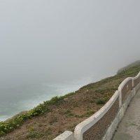 Туман над океаном :: Dimirtyi