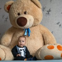 медвежонок :: aleksey