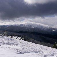 Говерла. Самая высокая гора в Украине. :: Александр Крупский