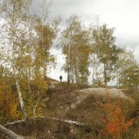 Деревья на холме :: esadesign Егерев