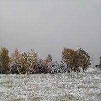 Первый снег в Иркутске. :: Андрей
