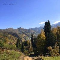 Дорога в горах. :: Anna Gornostayeva